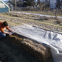 Agricultural & Planting - Plastic Poly Sheeting Example